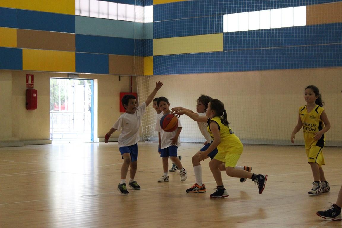 Fiesta BabyBasket 2016 - IMG_3395