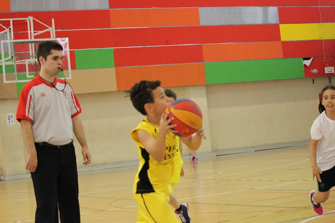 Fiesta BabyBasket 2016 - IMG_3418